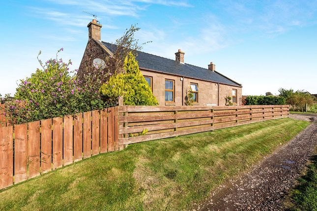 Thumbnail 3 bed bungalow for sale in Dubton, Montrose, Angus