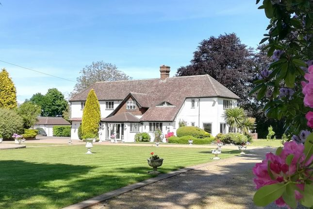 Thumbnail Detached house for sale in Rushmore Hill, Knockholt Sevenoaks