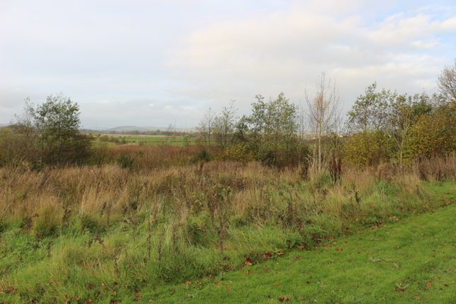 Thumbnail Land for sale in Dalscone Way / Avenue, Dumfries