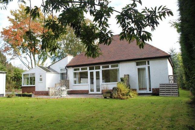 Thumbnail 3 bed bungalow to rent in Brizlincote Lane, Bretby, Burton-On-Trent