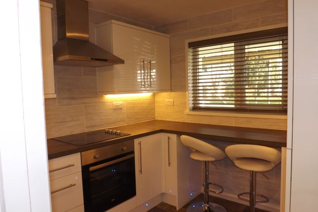 Thumbnail Flat to rent in St. Lukes Road, Torquay