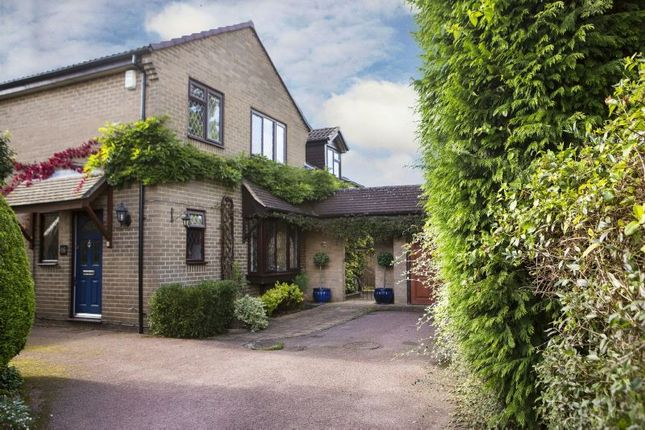 Thumbnail Detached house for sale in Cinnamon Close, Earley, Reading