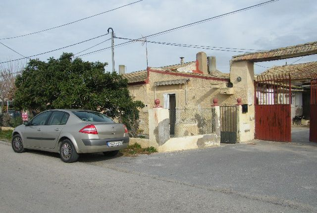 Daya Nueva, Dolores, Alicante, Valencia, Spain