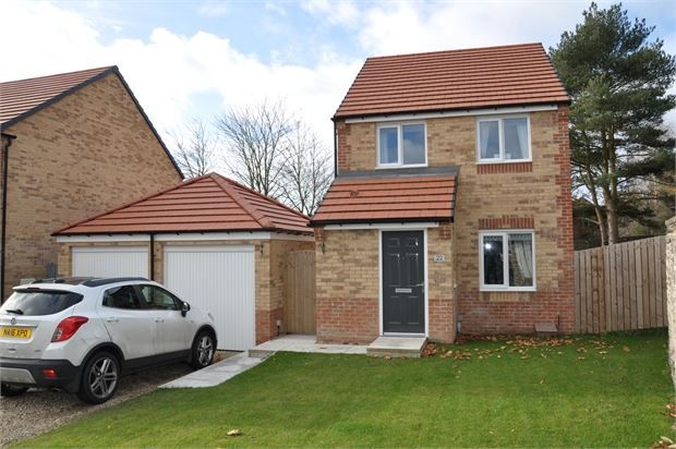 Thumbnail Detached house for sale in Gibson Close, Haltwhistle