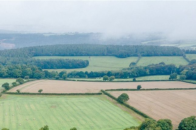 Thumbnail Land for sale in Morwell Barton, Tavistock, Devon