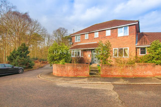 Thumbnail Detached house for sale in Pampas Close, Colchester
