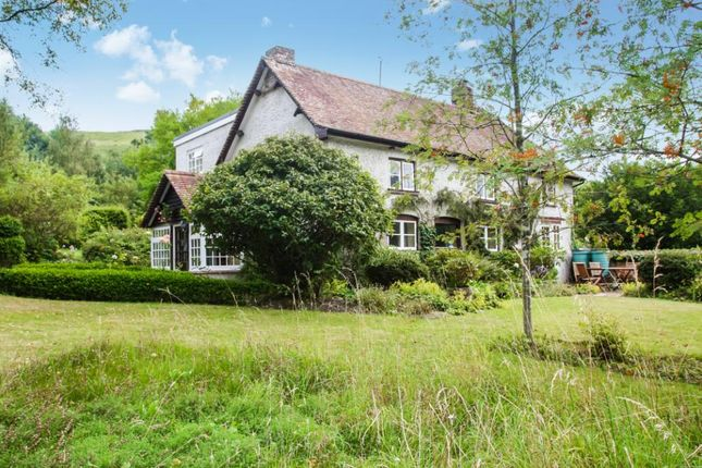 Thumbnail Detached house for sale in Plush, Dorchester, Dorset