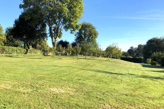 Thumbnail Land for sale in Hindon, Nadder Valley, Wiltshire
