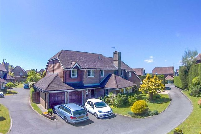 Thumbnail Detached house for sale in The Beeches, St. Leonards-On-Sea, East Sussex