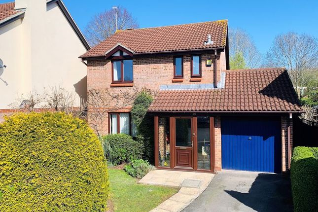 Thumbnail Detached house for sale in The Oaks, Taunton
