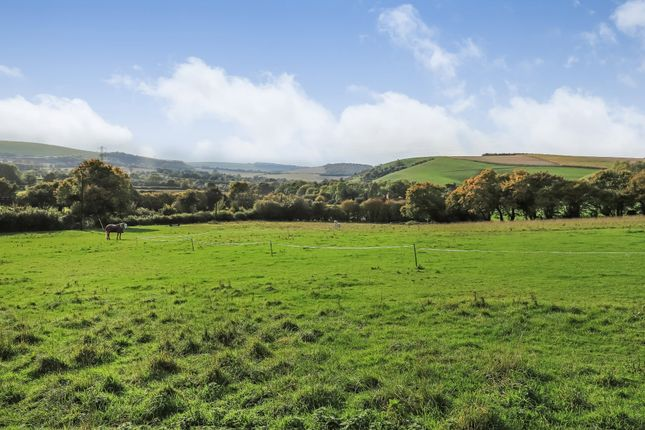 Thumbnail Equestrian property for sale in Ramsdean, Petersfield