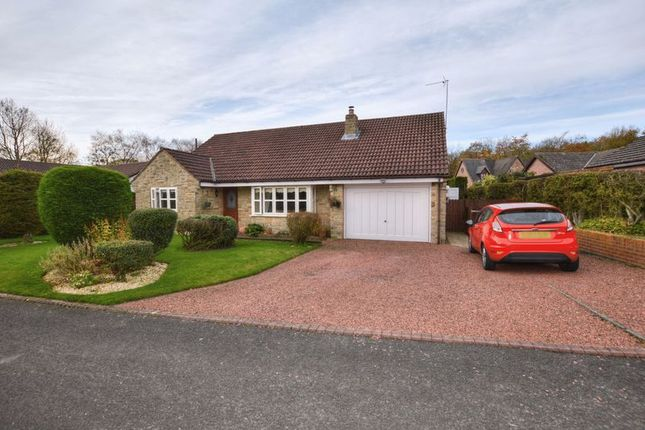 Thumbnail Bungalow for sale in Chesterwell, Swarland, Morpeth