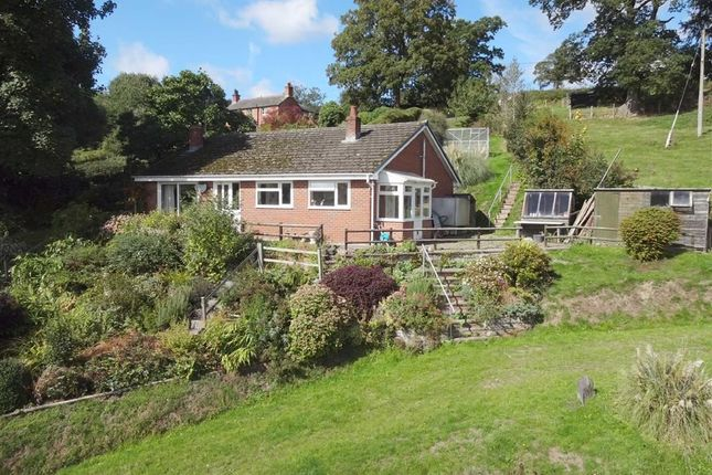 Thumbnail Bungalow for sale in Glenfryn, Belan School Lane, Welshpool, Powys