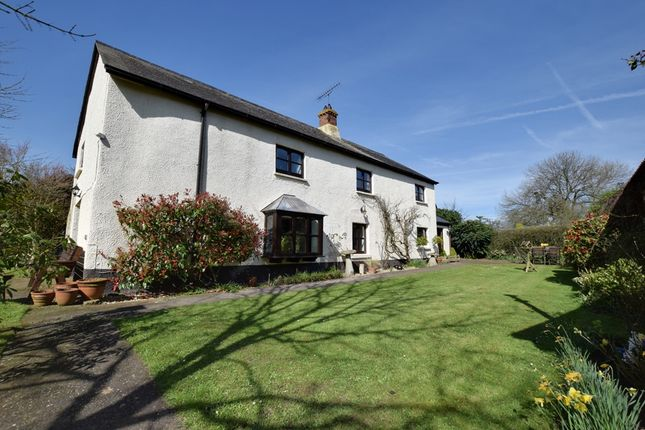 Thumbnail Farmhouse for sale in Halberton Road, Willand, Cullompton, Devon