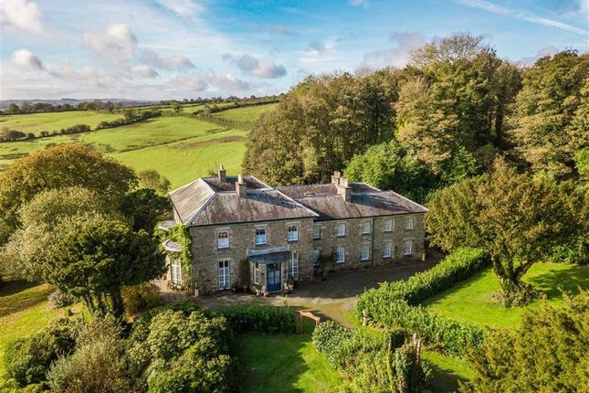 Thumbnail Detached house for sale in Brynteg, Llanybydder