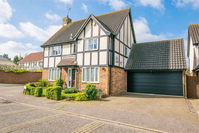 Thumbnail Detached house for sale in Hedgelands, Copford, Colchester, Essex