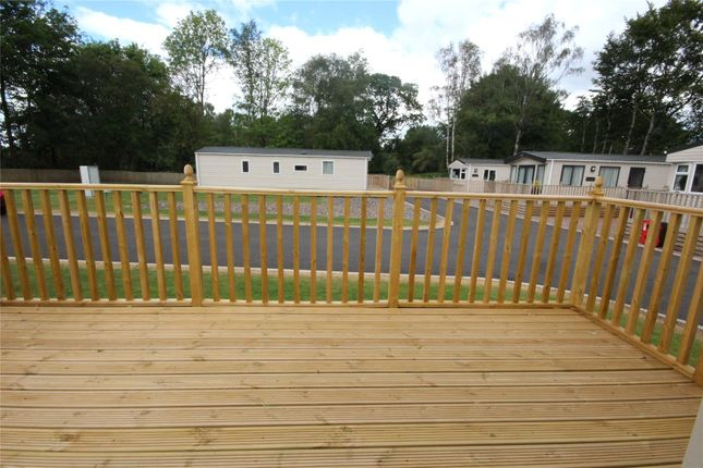 Decking Out of St David, Camelot Holiday Park, Longtown, Carlisle, Cumbria CA6