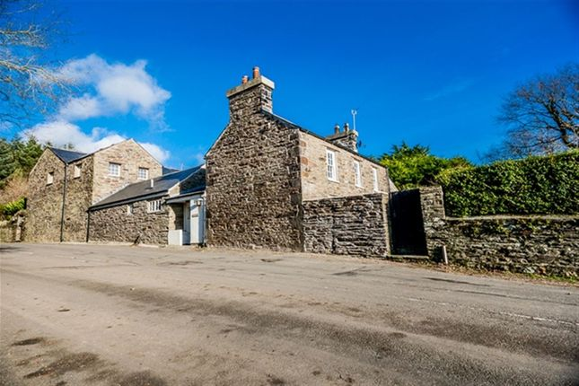 Thumbnail Property to rent in Arbory Street, Castletown, Isle Of Man