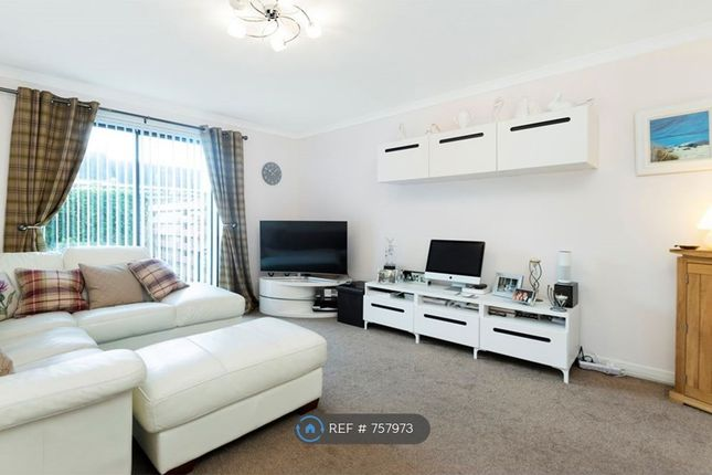 Thumbnail Flat to rent in Fort Street, Dundee