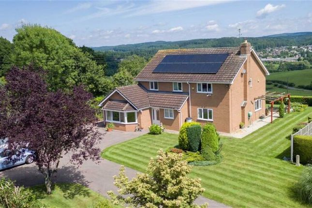 Thumbnail Detached house for sale in Knox Road, Brockhollands, Bream, Lydney