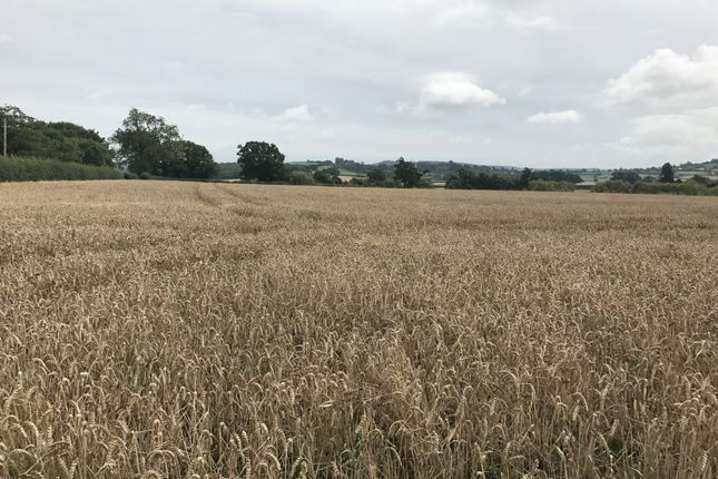 Land for sale in Gretton View, Alderton, Tewkesbury GL20