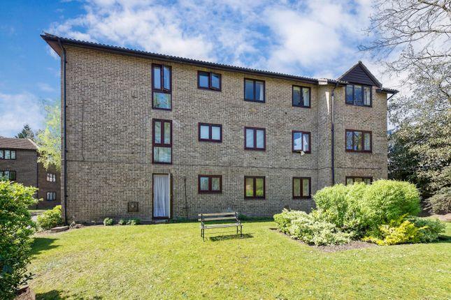 Thumbnail Flat to rent in Calluna Court, Woking