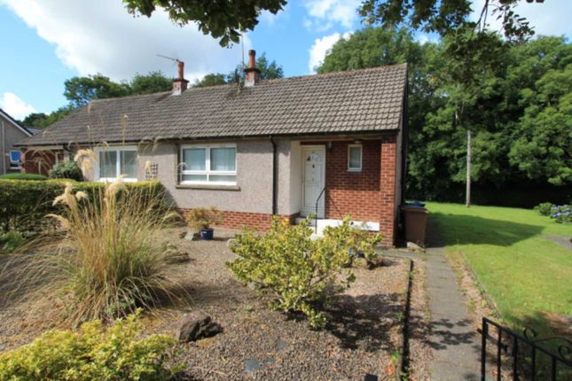 Thumbnail Bungalow to rent in Tower Road, Johnstone