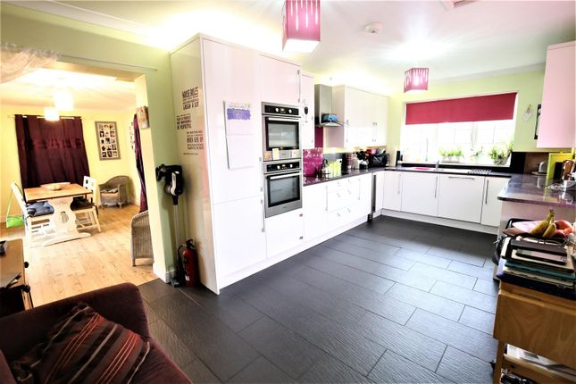 Thumbnail Property for sale in Old Bristol Road, East Brent, Highbridge