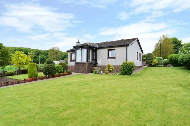 Thumbnail Detached house for sale in Cairndale, Greystone, Carmyllie