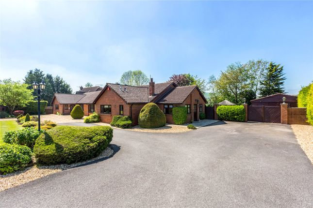 Thumbnail Detached bungalow for sale in Ogbourne St. George, Marlborough, Wiltshire