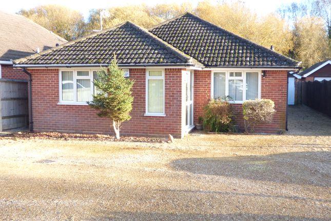 Thumbnail Detached bungalow to rent in Woodlands Road, Netley Marsh