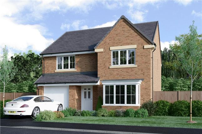 "Thumbnail Detached house for sale in ""Douglas"" at Church Road, Warton, Preston"