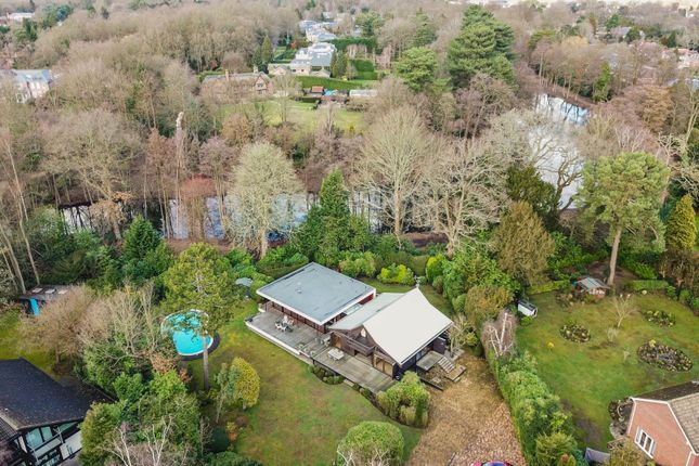 Thumbnail Detached house for sale in Onslow Road, Burwood Park, Hersham, Walton-On-Thames