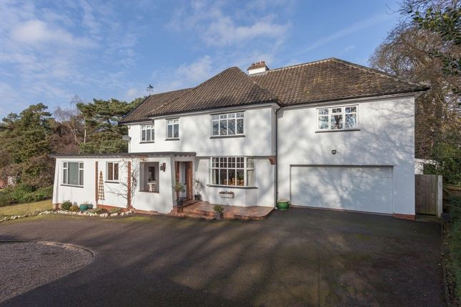 Thumbnail Detached house for sale in South Avenue, Thorpe St Andrew, Norwich