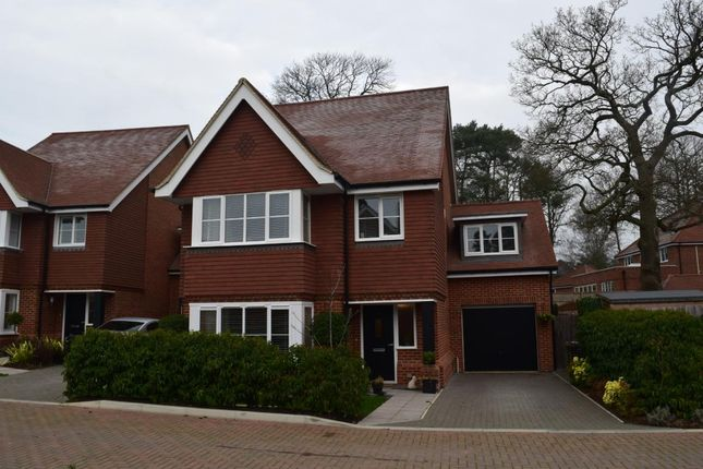 Thumbnail Detached house for sale in Adonis Close, Camberley