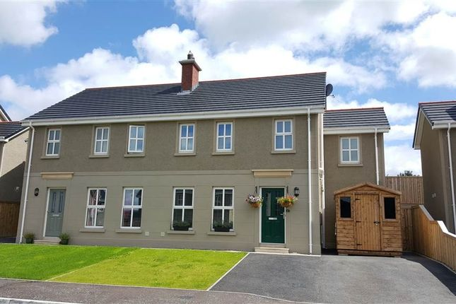 Thumbnail Semi-detached house for sale in Laurel Grove, Newry