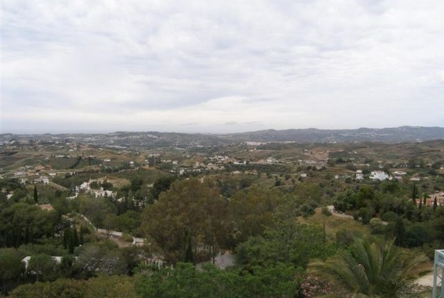Views From Upper Terrace