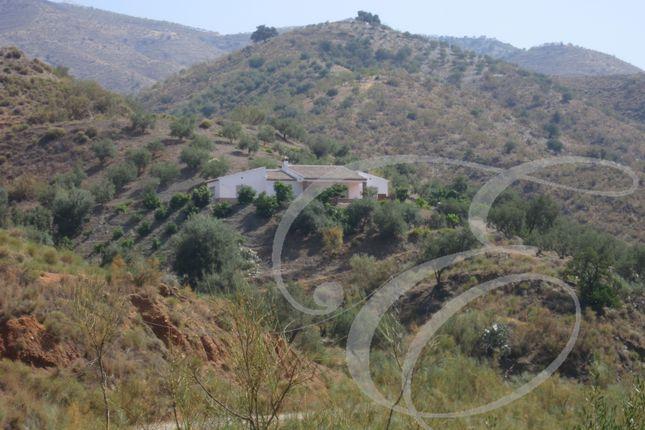 Rubite, Axarquia, Andalusia, Spain