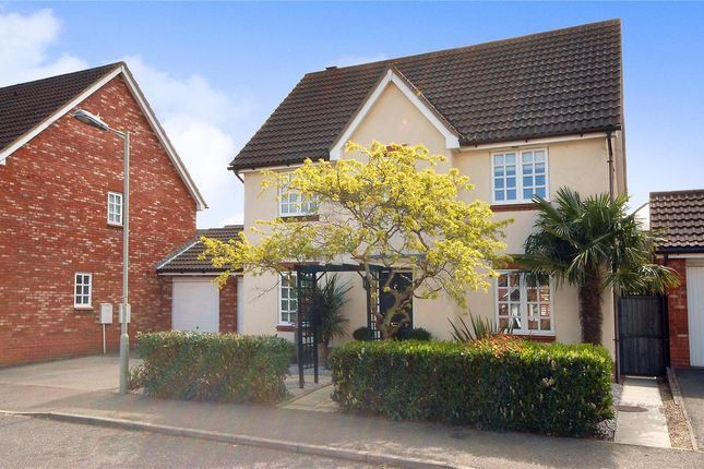 Thumbnail Detached house for sale in Bittern Road, Saxmundham
