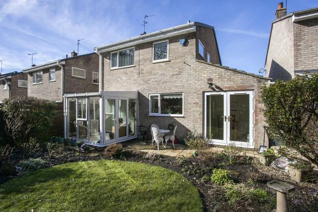 Thumbnail Detached house for sale in Deneside, Howden Le Wear, County Durham