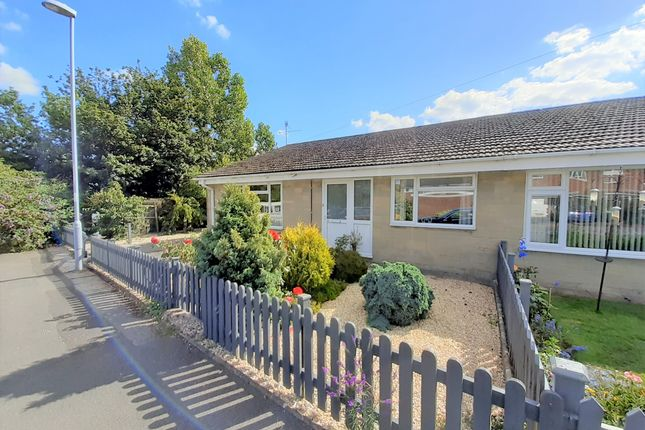 Thumbnail Bungalow to rent in Springfield Close, Shaftesbury
