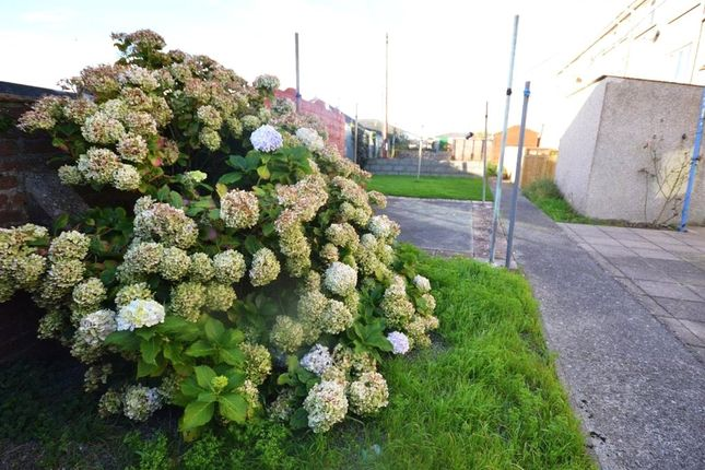Picture No. 03 of Observatory Avenue, Hakin, Milford Haven SA73