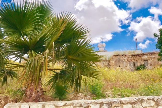 Thumbnail Land for sale in Ayia Varvara, Paphos, Cyprus