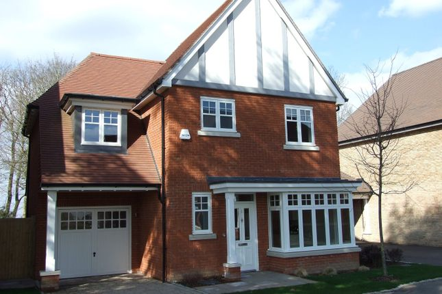 Thumbnail Detached house to rent in Lucas Park Drive, Walton On The Hill