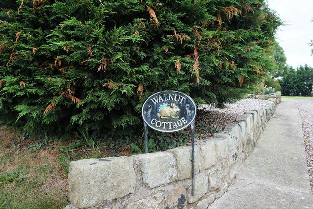 Front of School Lane, Marbury SY13
