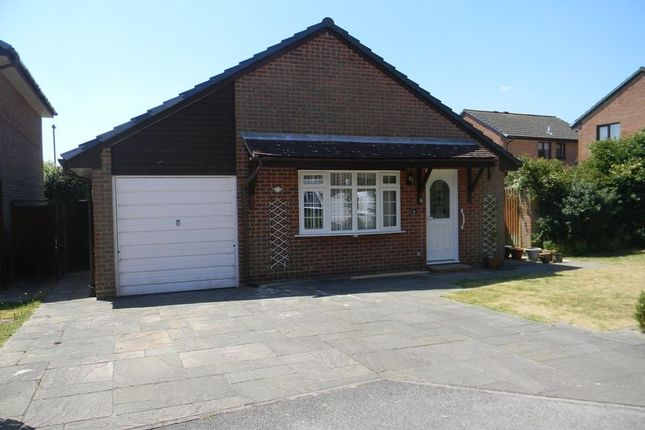 Thumbnail Bungalow to rent in Clover Close, Locks Heath, Southampton