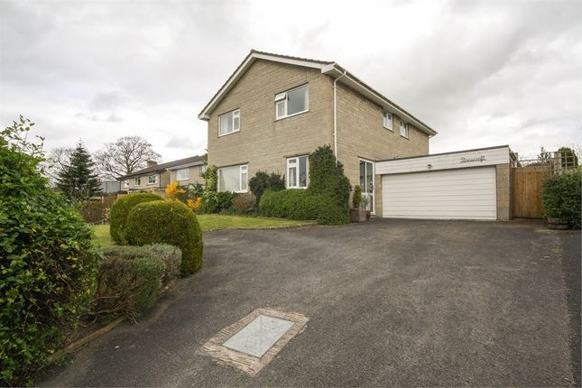Thumbnail Detached house for sale in Stonecroft, Plud Street, Wedmore, Somerset