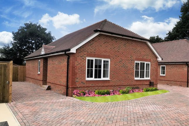 Thumbnail Detached bungalow for sale in Main Road, Southbourne