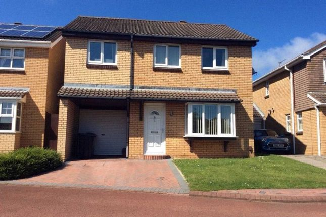 Thumbnail Detached house to rent in Rillston Close, Naisberry Park, Hartlepool