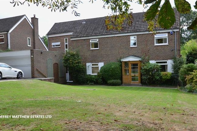Thumbnail Detached house for sale in Staffords, Old Harlow, Essex